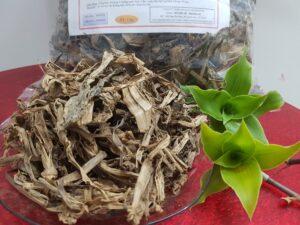 Cây lược vàng Thảo Dược Thanh Bình
