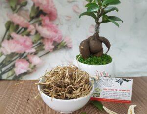 Cây cỏ may Thảo Dược Thanh Bình