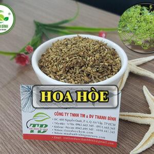 Hoa hòe Thảo Dược Thanh Bình