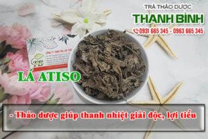 Lá atiso Thảo Dược Thanh Bình