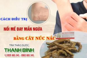 Cây núc nác Thảo Dược Thanh Bình