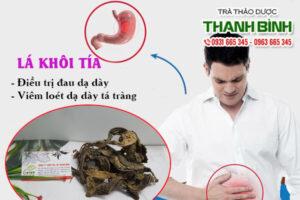 Lá khôi tía Thảo Dược Thanh Bình
