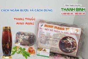 Thang thuốc Minh Mạng Thảo Dược Thanh Bình